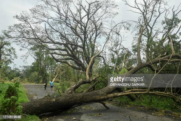People walk ahead of a tree that has fallen across an alley following the landfall of cyclone Amphan at the Indian Botanical Garden in Kolkata on May...