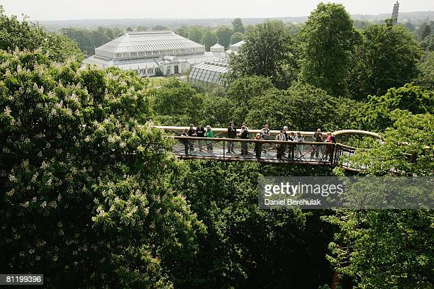 People walk along the Xstrata Treetop Walkway at Kew Gardens on May 22 2008 in London England The 18m high Xstrata Treetop Walkway and the Rhizotron...
