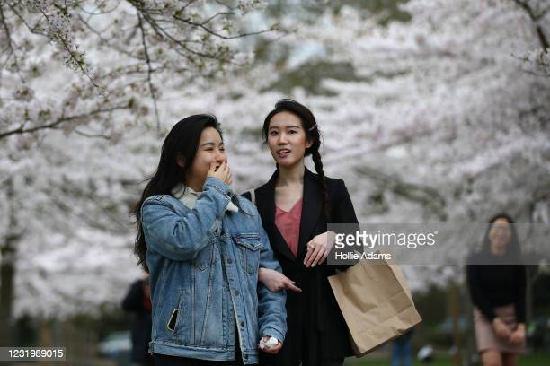 People walk amongst blossom trees in Battersea Park on March 28, 2021 in London, England. Starting tomorrow, England will ease its rules on...