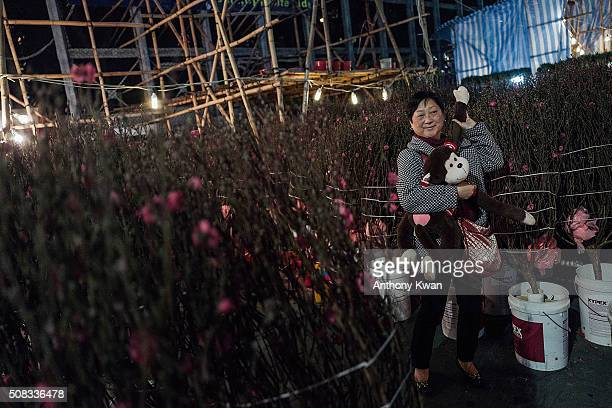 People walk around peach blossoms to bring better luck in their love life for the upcoming year on February 4 2016 in Hong Kong The Chinese Lunar New...