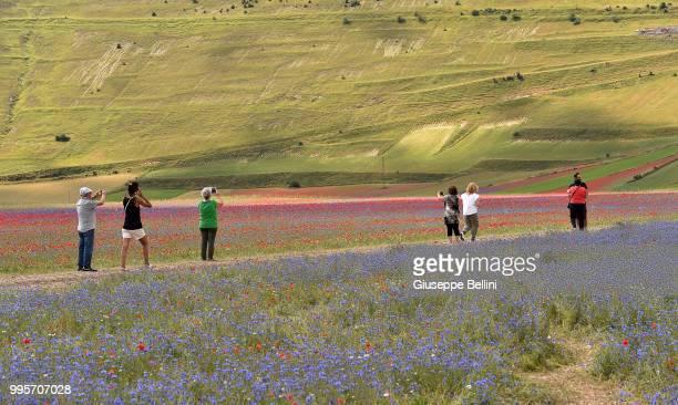 People walk in the fields during Annual Blossom in Castelluccio on July 10, 2018 in Castelluccio di Norcia near Perugia, Italy.