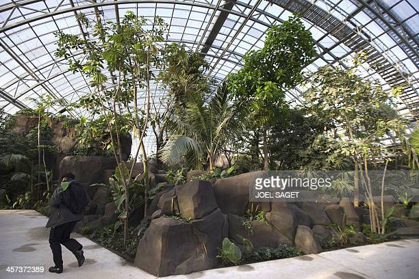 People walk on December 17 2013 in Paris zoological parc also known as the Zoo of Vincennes's greenhouse in Paris five months before the official...