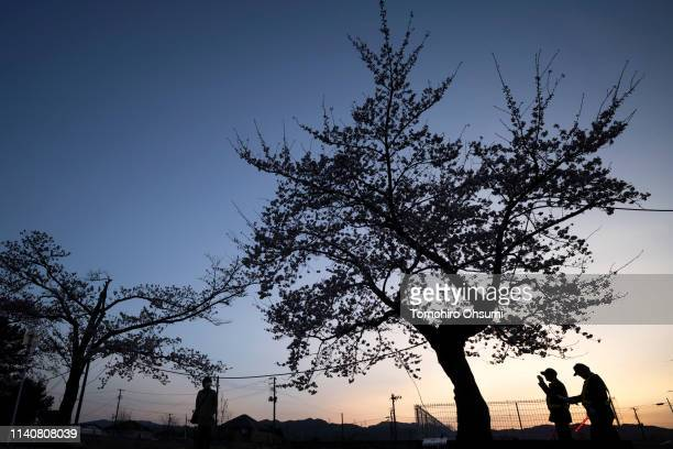 People walk past a cherry tree in bloom outside the difficulttoreturn zone in the Yonomori area on April 6 2019 in Tomioka Fukushima Japan The tunnel...