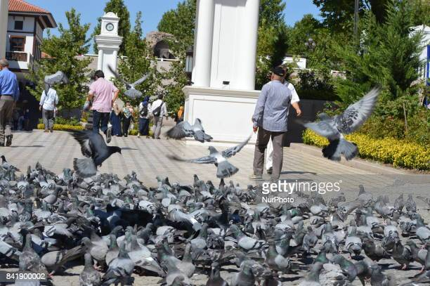 People walk past pigeons as people enjoy their holiday by visiting the Haci Bayrami Veli Mosque and its around on the second day of Muslims'...