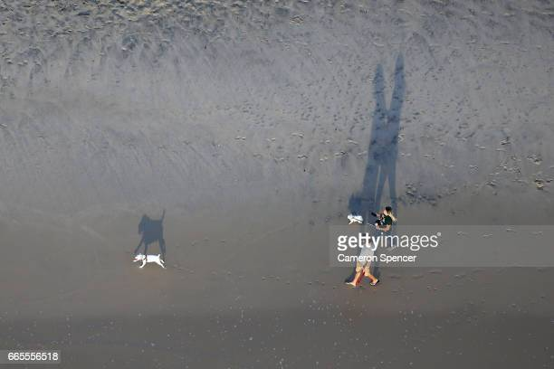 People walk their dogs on the beach at Burleigh Heads on April 7 2017 in Gold Coast Australia The 2018 Commonwealth Games will be held on the Gold...