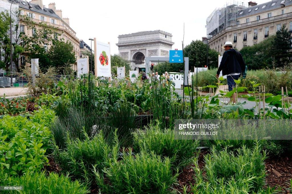 People Walk Though The U0027BiodiversiTerreu0027 Garden, At The Foot Of The Arc De