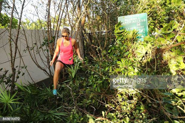 People walk through downed trees the morning after Hurricane Irma swept through the area on September 11 2017 in Fort Myers Florida Hurricane Irma...