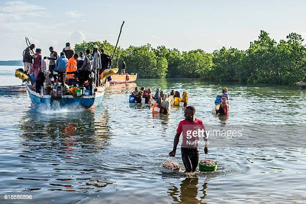 People walk through water with buckets in their hand to buy anchovies locally called Dagaa from the fishermen's boats in Mkokotoni village Zanzibar...