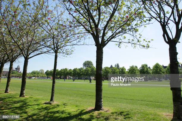 people walking and enjoy at museum square in amsterdam - museumplein stock pictures, royalty-free photos & images