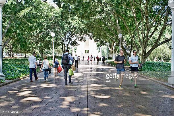 People walking and running in Hyde Park, Sydney