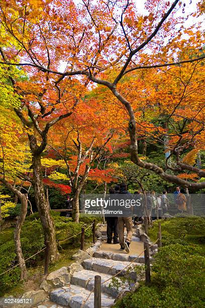 People walking around autumn trees in Ginkakuji Kyoto