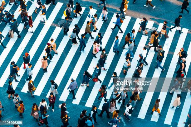 people walking at shibuya crossing, tokyo - vita cittadina foto e immagini stock