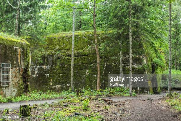 People walking at the Wolf's Lair remains are seen on 2 September 2017 in Gierloz Poland Wolf's Lair ruins of Adolf Hilter's war headquarters is Its...