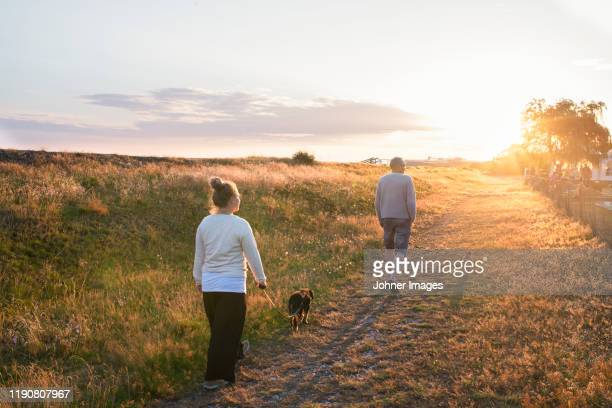 people walking dog at sunset - twilight stock pictures, royalty-free photos & images