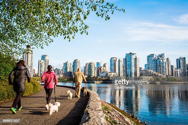 vancouver, british columbia, canada. people walking dogs on a waterside trail with downtown skyline in the distance. - カナダ バンクーバー ストックフォトと画像