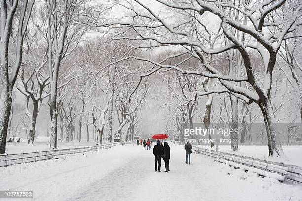 People walking in Central Park in winter