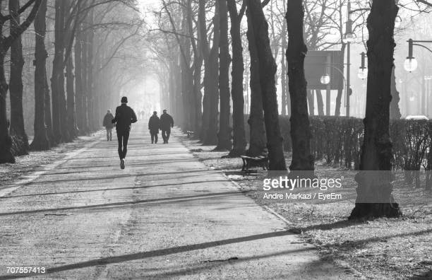 People Walking In Forest During Winter