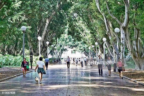 People walking in Hyde Park, Sydney