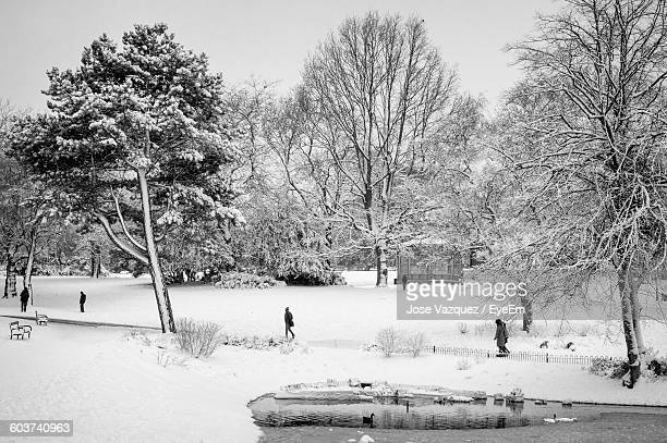 people walking in snow covered park against sky - sheffield stock pictures, royalty-free photos & images