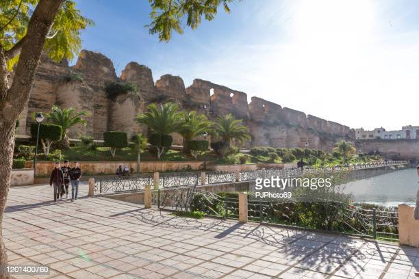 people walking near of bassin souani and royal stables in meknes - morocco - pjphoto69 foto e immagini stock