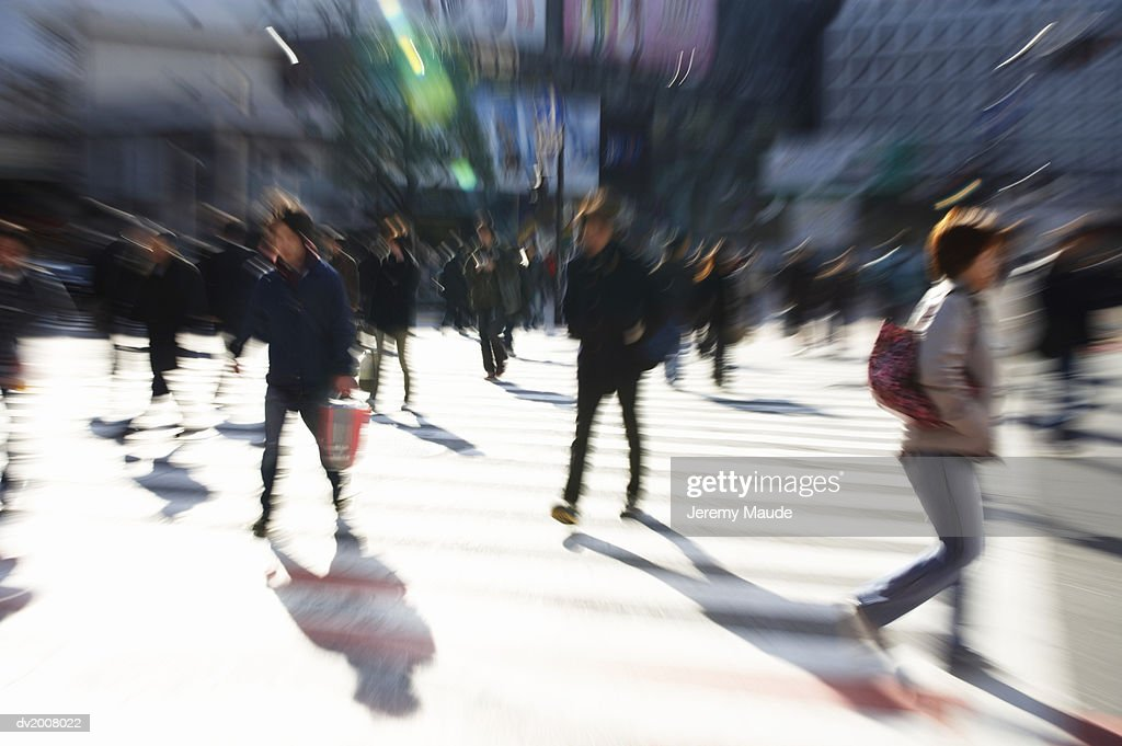 People Walking on a Zebra Crossing, Shibuya, Tokyo, Japan : Stock Photo