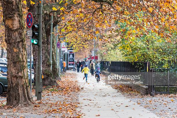 People Walking On Street By Trees During Autumn