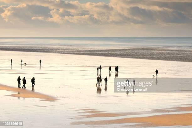people walking on the beach in normandy, france - haute normandie stockfoto's en -beelden