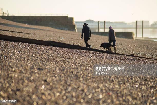 People walking their dog on Brighton Beach - England.