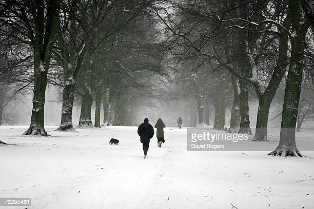People walking their dogs in Abington Park as heavy snowfall sweeps across the country on February 8 in Northampton United Kingdom
