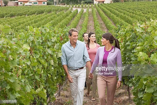 People walking through vineyard