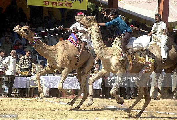 People watch a camel race a popular feature at the annual camel and cattle fair at Pushkar in the desert state of Rajasthan 11 November 2000 Also...