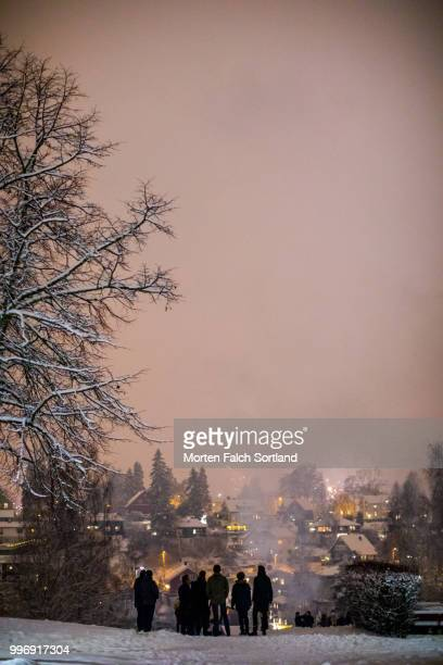 people watch a firework display in a snow-covered park in oslo, norway on new year's eve - オスロ ストックフォトと画像