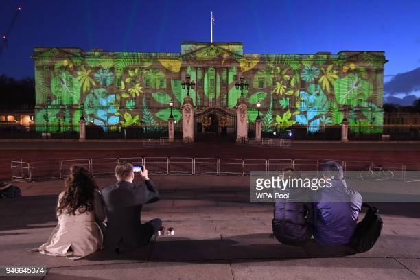 People watch and take photos of a rainforest design projected onto the facade of Buckingham Palace to celebrate Her Majesty Queen Elizabeth II's...