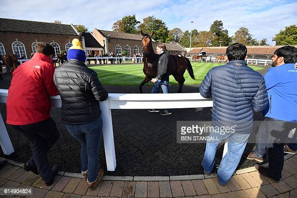 People watch as a horse is paraded at the Tattersalls Bloodstock Auction in Newmarket north of London on October 11 2016 There may have been much...