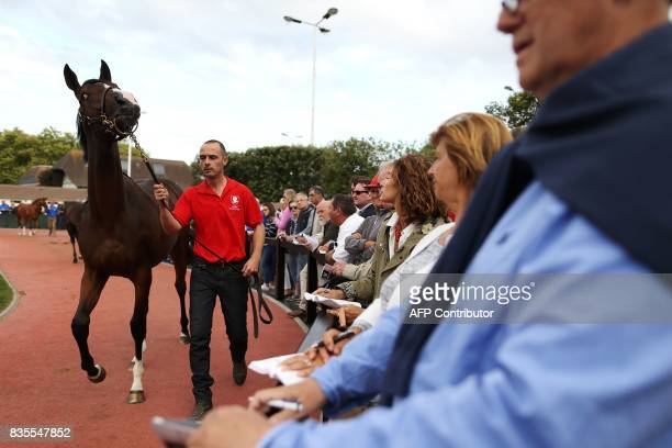 People watch as a stable hand walks a thoroughbred foal during the Yearlings sales one of the world renowned annual thoroughbred sales in Deauville...