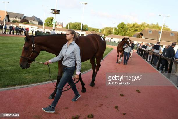 People watch as stable hands walk thoroughbred foals during the Yearlings sales one of the world renowned annual thoroughbred sales in Deauville on...