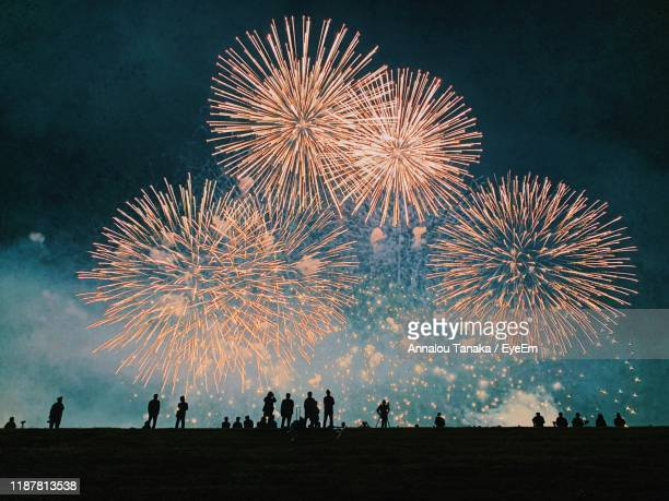 people watching firework display at night - fireworks stock pictures, royalty-free photos & images