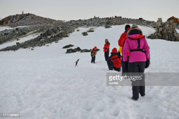 People watching penguins in Antarctica