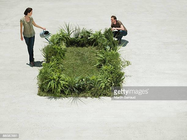 People watering lush lawn in cement courtyard