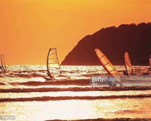People windsurfing in the sea