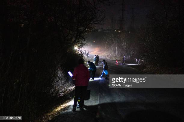 People with buckets pick up frogs along a road in Kranj, to carry them across during an action for protection of migrating amphibians. The Institute...