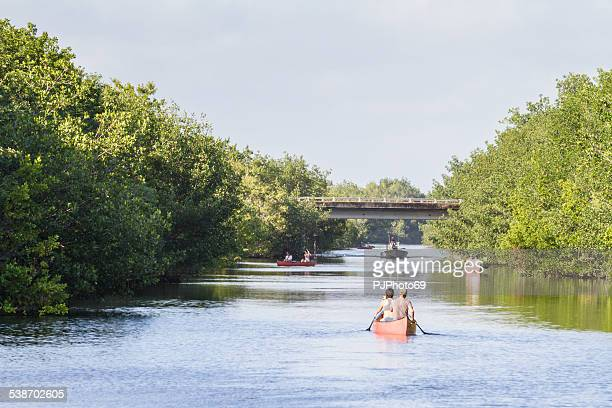 people with canoes in everglades national park - pjphoto69 個照片及圖片檔