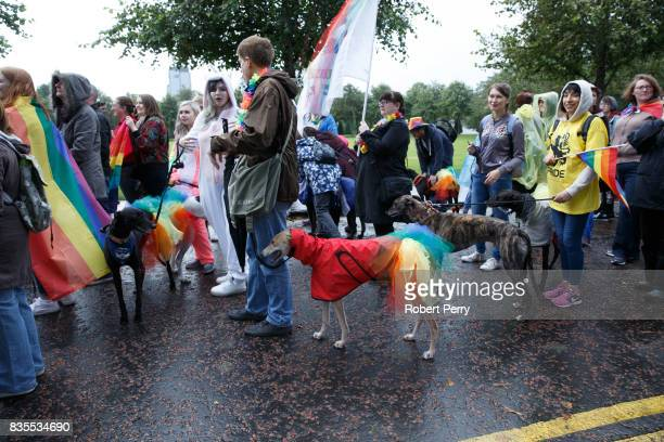 People with dogs attend the Glasgow Pride march on August 19 2017 in Glasgow Scotland The largest festival of LGBTI celebration in Scotland has been...