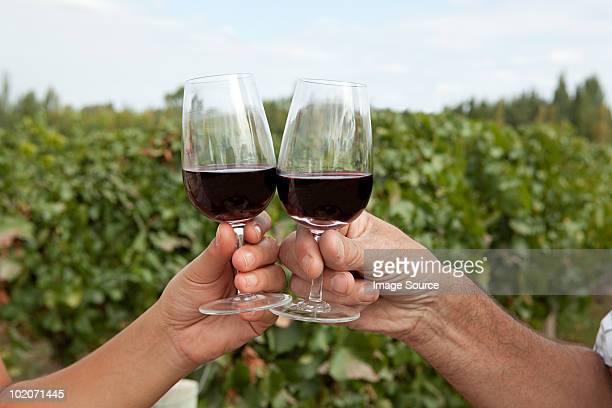 Personas con copas de vino tinto en el Viñedo