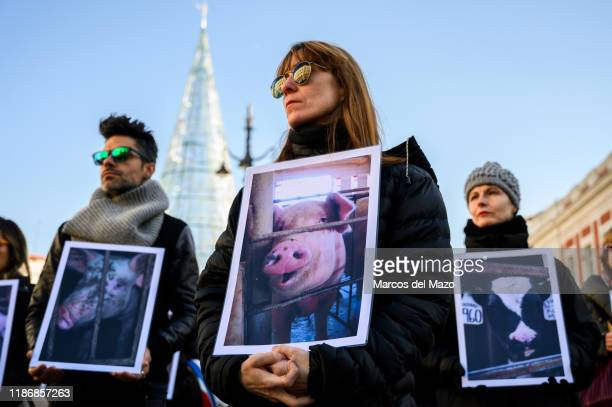 People with pictures showing the conditions of animals in farms, protesting against animal abuse called by 'Animal Equality' , denouncing the impact...