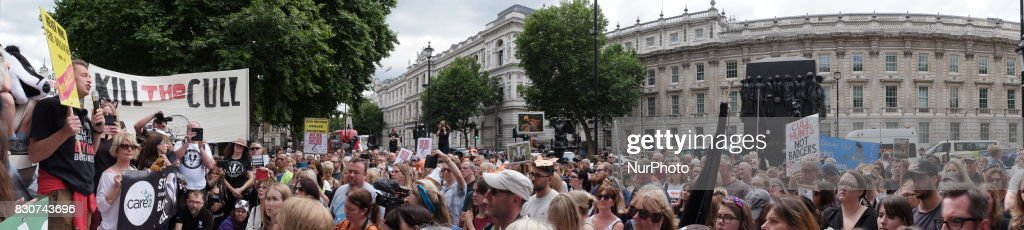 People with signs as animal rights activists protest though central London, UK, on 12 August 2017. As the Grouse shooting season starts in the UK, animal conservation protesters march though London to protest against the hunting of the UK's wildlife.