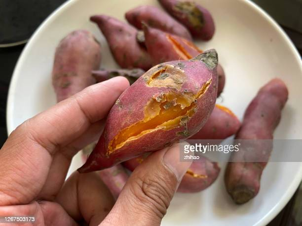 people with steamed sweet potatoes in their hands - irish potato famine stock pictures, royalty-free photos & images