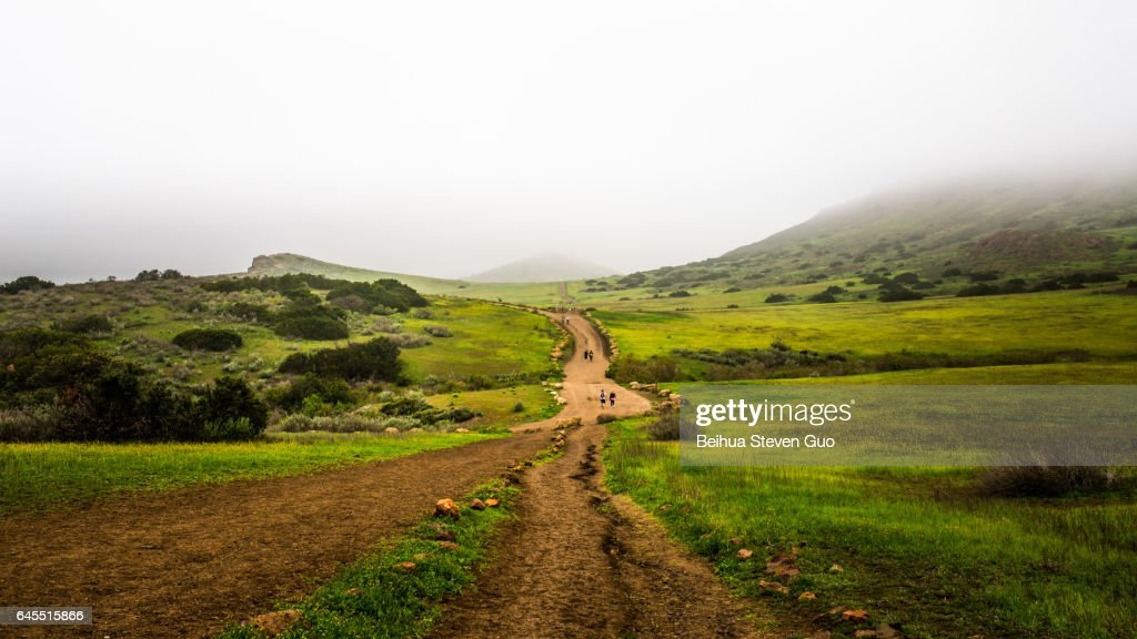 People Wlking on Hiking Trails at Wildwood Regional Park on a Foggy Day : Stock Photo