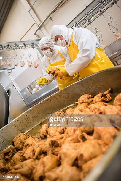 People working at a chicken factory