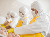 People working at a food factory